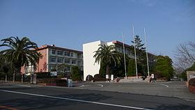 黒木渚,市役所,高校,どこ,カップ,画像